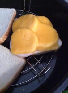 la rebanada de pan con el fiambre de pavo y el queso cheddar encima...