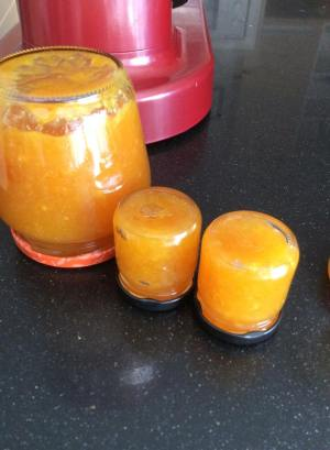mermelada de naranja y limon3