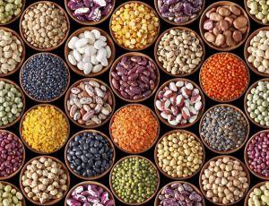 ollas-gm-oliveres-año-legumbres